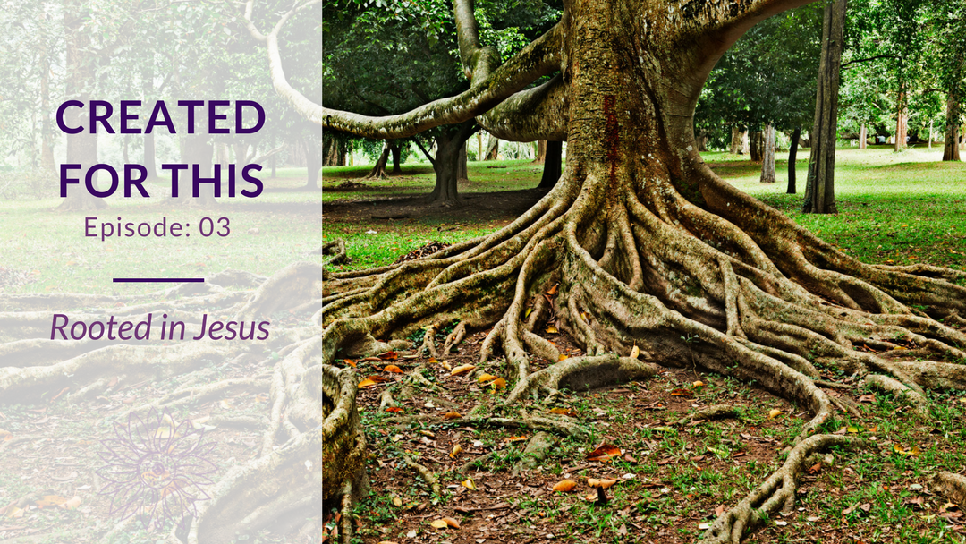 Created for This Episode 3: Rooted in Jesus